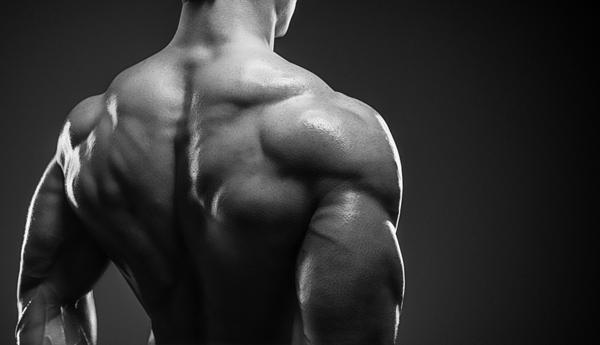 肩のトレーニングでマッチョな三角筋を鍛え上げる4つの方法